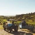 Wine farm wage deal