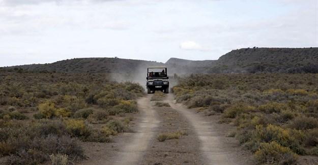 Sanbona Explorer Camp: A holistic safari adventure in the Klein Karoo