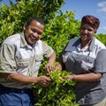 R300m empowerment project aims to uplift agricultural sector