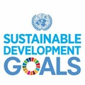 Why are the UN SDGS important?