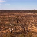 Call for further assistance in drought relief
