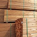 Ensure imported wood is compliant, warns ITC-SA
