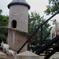 Fairview goats get a skywalk and playpark