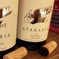 Top Wine SA Hall of Fame champions announced