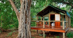 Discover Moremi Game Reserve