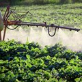 Debate over glyphosate rages in South Africa