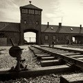 Poland puts Auschwitz staff database online