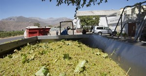 Challenging times for SA wine industry with excise hikes