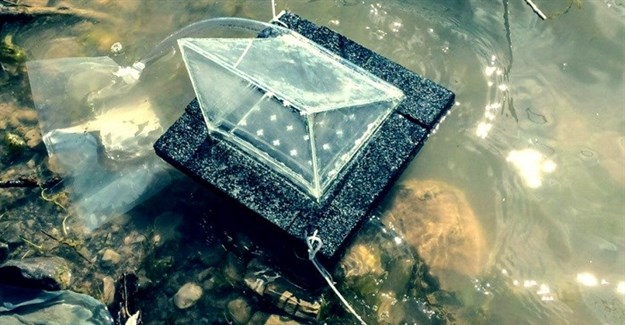 Students harness the sun to purify water