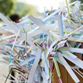 SA's paper recycling recovery rate on par with developed countries