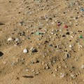 Plastic fibres are causing major harm to South Africa's marine life
