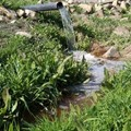 Ghazi Al Jabri via  - Use of treated wastewater for agriculture in Jordan