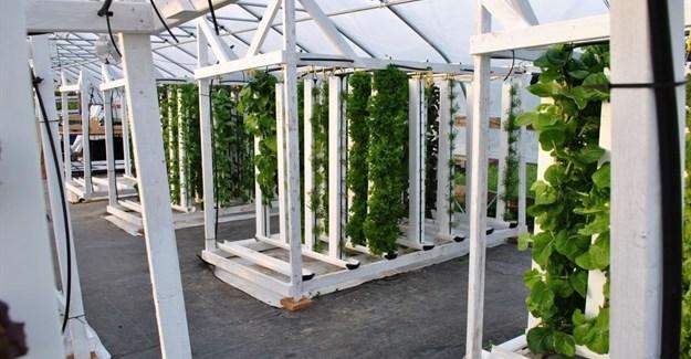 Bright Agrotech via