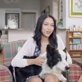 FoxP2 creates SPCA adoption campaign