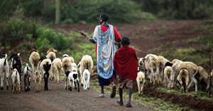 Collective land tenure is under threat in Kenya. Why it needs to be protected