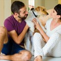Home designs for your four-legged family