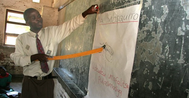 Malaria education in Malawi. Source: WHO/S Hollyman