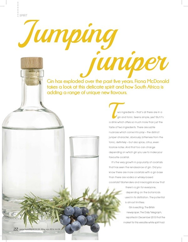 Cheers Magazine - Gin Feature