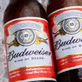 AB InBev to launch Budweiser in SA