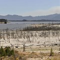 Cape Town drought crisis reaching critical point