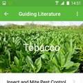 Murimi-Umlimi app boost for farmers