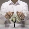 New Environmental Management Bill tabled