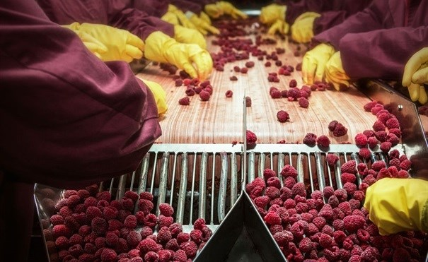 Blockchain seen as tool in food safety