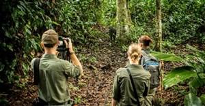 Four alternatives to gorilla trekking in Rwanda