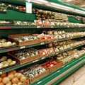 Global food prices climb in May: FAO
