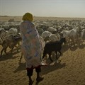 Chad is the country most vulnerable to climate change - here's why