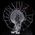 #CannesLions2017: Glass Lions winners!