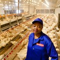 Mpho Nemukula, poultry farm manager, Sovereign Foods