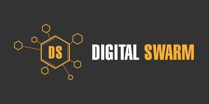A swarm of digital natives heads to Joburg