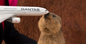 Qantas reveals names for its Dreamliner fleet