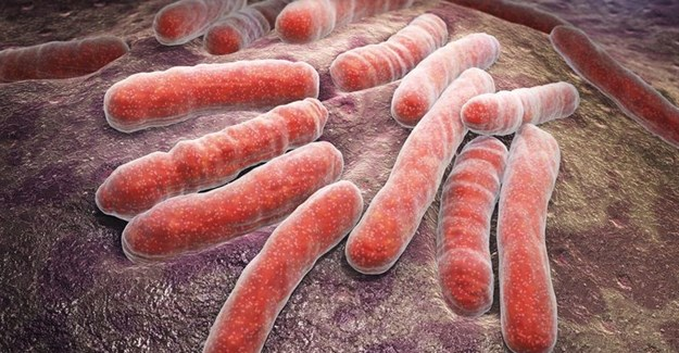 Study: Mutant protein affects TB treatment time