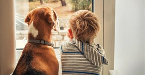 Boomerang pet survey highlights role of pets within families