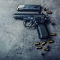 SAPS appeals court judgment on firearm renewals