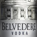 Belvedere Vodka wins gold at international CSR awards