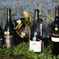 Waterblommetjie Festival features local Paarl wineries