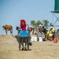 Image Source:  (Photo: AFP /MUJAHID SAFODIEN)