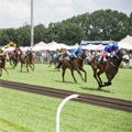 The 2017 Gauteng SANSUI Summer Cup