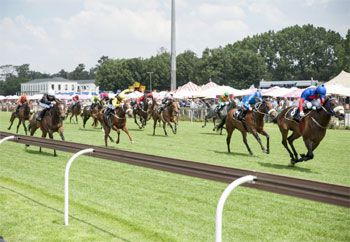 Thrilling racing at the Gauteng SANSUI Summer Cup