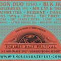 Final lineup announced for Endless Daze Music Festival