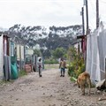 The City of Cape Town has decided not to proceed with the expansion of Wolwerivier settlement. Archive photo: Ashraf Hendricks