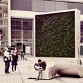 CityTree: The oxygen-producing forest in miniature