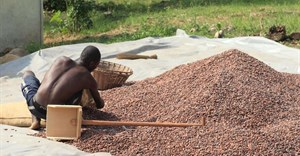 Ghana aims to regain top spot in cocoa production