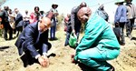 Minister Senzeni Zokwana, MEC Oupa Khoabane planting a food garden during household visits in Phuthaditjhaba