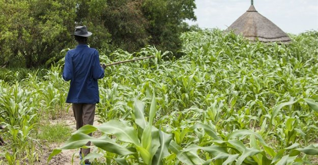 SACAU: Agriculture can play a critical role in eradicating poverty