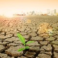 Call for climate change health funding