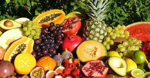 Global food import bill set to rise, boost in tropical fruit exports likely